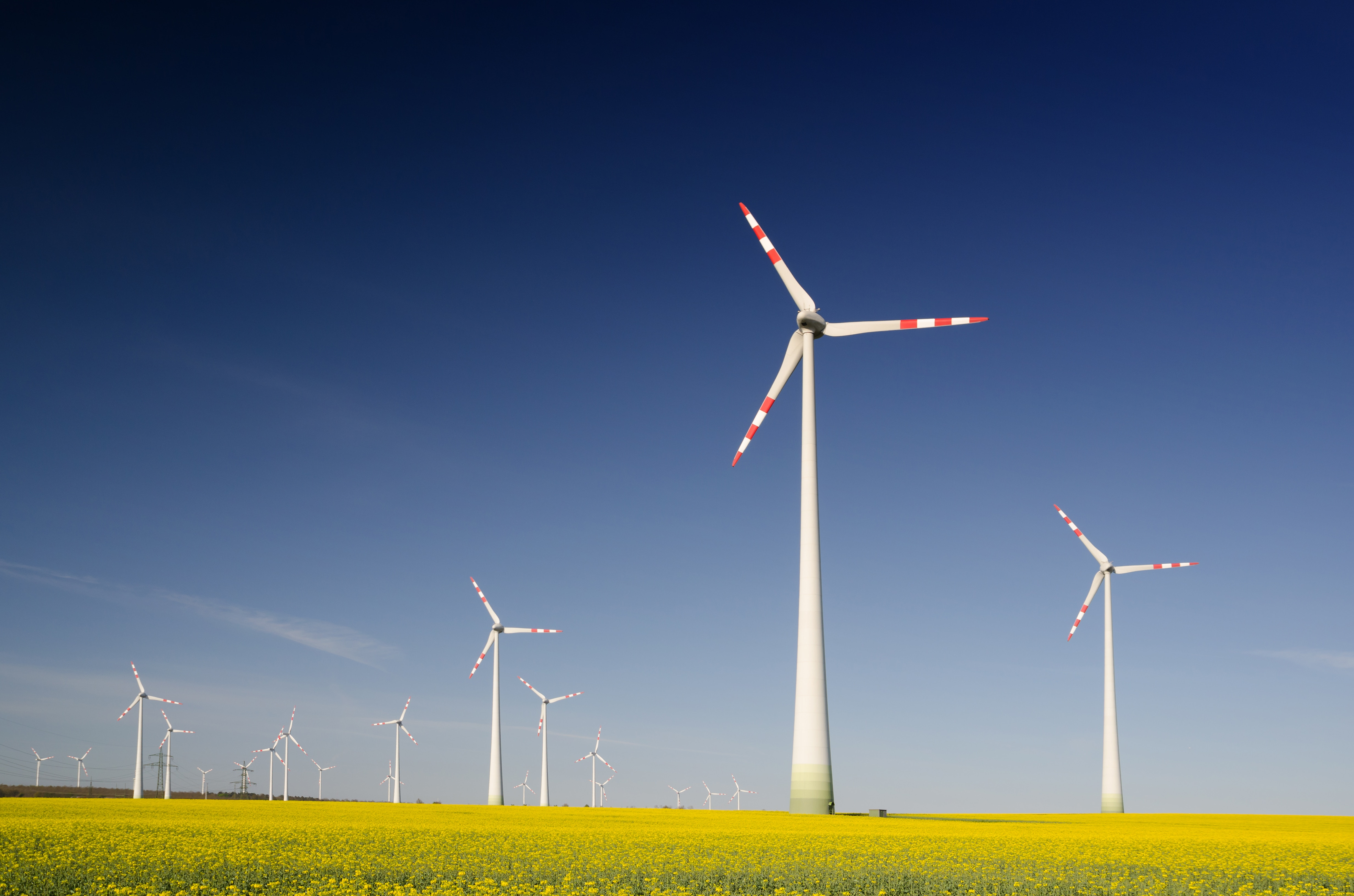 Nachhaltigkeit — Was ist damit eigentlich genau gemeint?